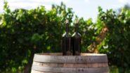 Vyhrajte chorvatské víno!
